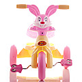 Kids Tricycle - Pink at Kapruka Online for specialGifts